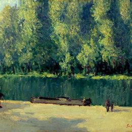 《被掠奪》阿爾弗萊德·西斯萊(Alfred Sisley)高清作品欣賞
