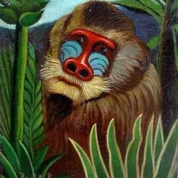 亨利·盧梭(Henri Rousseau)高清作品:Mandrill in the Jungle