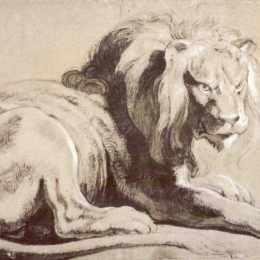 《獅子練習曲》彼得·保羅·魯本斯(Peter Paul Rubens)高清作品欣賞