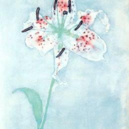《莉莉》皮特·蒙德里安(Piet Mondrian)高清作品欣賞