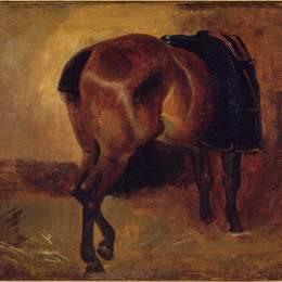 《從后面看海灣馬的研究》泰奧多爾·席里柯(Theodore Gericault)高清作品欣賞