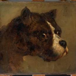 《斗牛犬的頭》泰奧多爾·席里柯(Theodore Gericault)高清作品欣賞