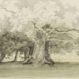 《公園里的樹》托馬斯·格爾丁(Thomas Girtin)高清作品欣賞